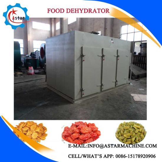 Carbon Steel Stainless Steel Industrial Food Dryer Machine pictures & photos