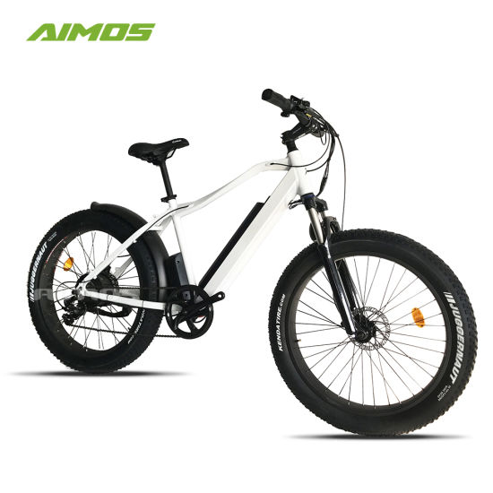 250W 1000W Fat Tire Electric Bicycle for Adult pictures & photos