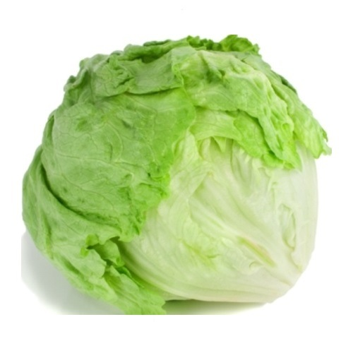 Fresh Iceberg Lettuce Supplier From China pictures & photos