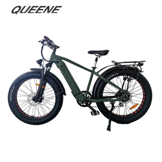 Queene/Aimos Fat Tire Ebike with LCD Display for Performance Riding