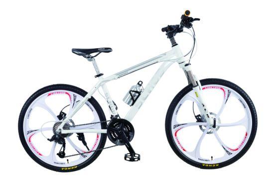 27 Speed Mountain Bike with Thicken Fork, Oil Brake (008H)