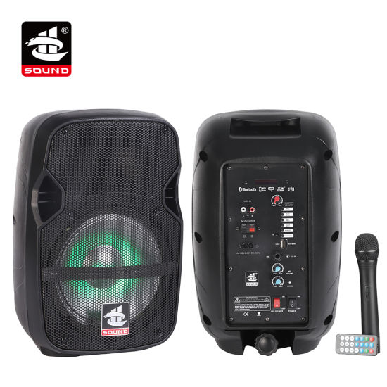 China Professional Audio Battery Speaker Bluetooth Speaker