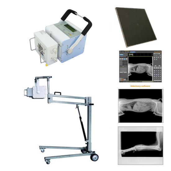 5kw Veterinary Digital Portable X-ray Machine pictures & photos