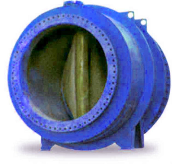 Bouble Flange End Rubber Non Return Check Valve (GLS) pictures & photos