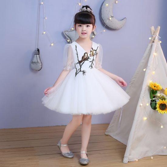 Hot Sale Embroidery Girl Dresses