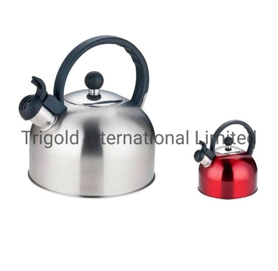 Popular Stainless Steel Kettle Cordless Kettle Tgk2970