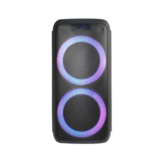 Good Sales New Party Wireless Double 8inch Portable PA Bluetooth DJ Private Speaker with Fashionable Light