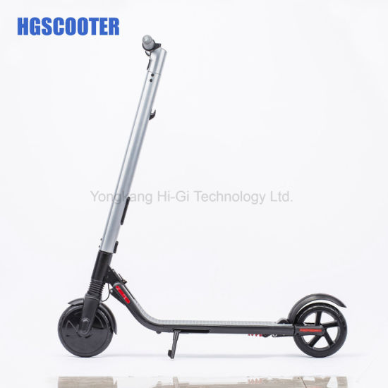 2019 LG Battery Electric Scooter Ninebot Es1 Es2 Es3 with Extra Battery