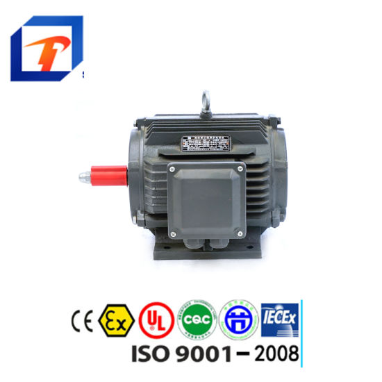Jinlite Three Phase Induction Asynchronous AC Electric Motor