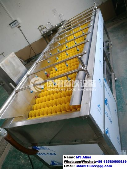 HP-360 High Spray Fruit Washing Machine Vegetable Washer pictures & photos