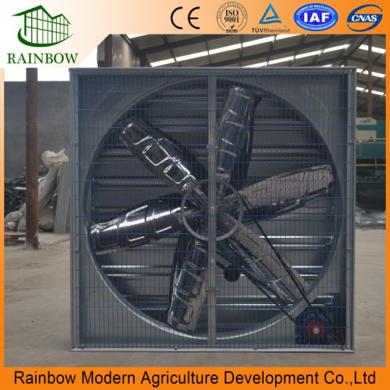 Hammer Exhaust Fan for Poultry House Ventilation