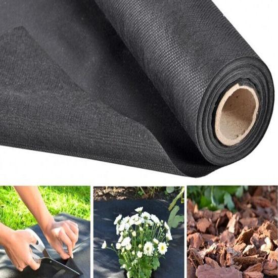 Agriculture Non Woven Polypropylene Fabric