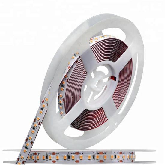 12W 60LEDs SMD2835 Wholesale Flexible LED Linear Strip Light