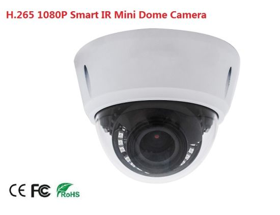 Fsan H. 265 2MP IR Infrared Night Vision HD Network Security Dome Camera