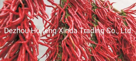 2018 New Crop Whole Dry Red Line Pepper/Chili pictures & photos