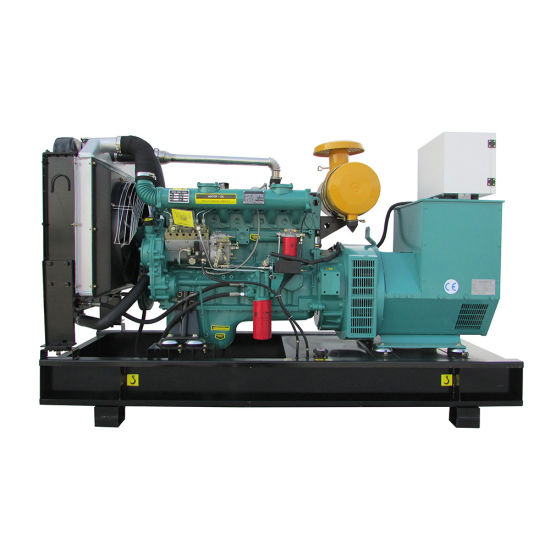 China 100kw 300kw Biogas Generator Use for Biogas Plant
