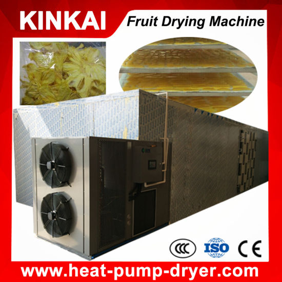 No Pollution Mango Slice Dryer/ Fruit and Vegetable Drying Machine pictures & photos