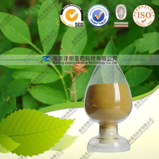 Natural Licorice Root Extract 95% Monoammonium Glycyrrhizinate pictures & photos