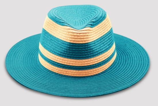 Paper Cloth Straw Hat with Wide Brim with Different Color pictures & photos