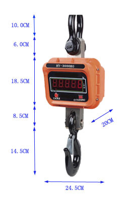 1 Year Warranty Electronic Weighing Crane Scale pictures & photos