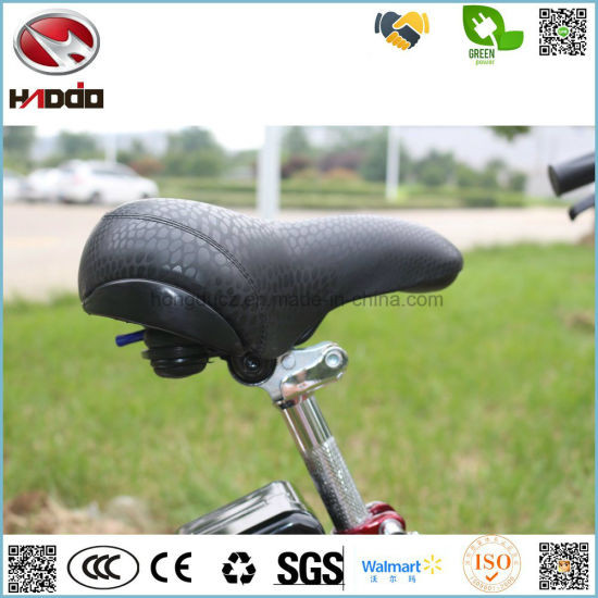 Hot Sale 250W Wholesale Electric City Bike Lithium Battery Bicycle Pedalgo Tour E-Bike Riding Vehicle pictures & photos