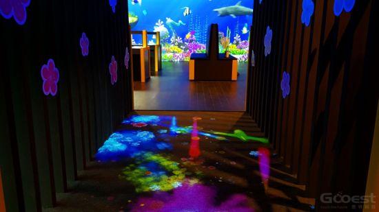 Gooest Interactive Floor Projector Game Interactive Art Floor for Kids Center and Malls