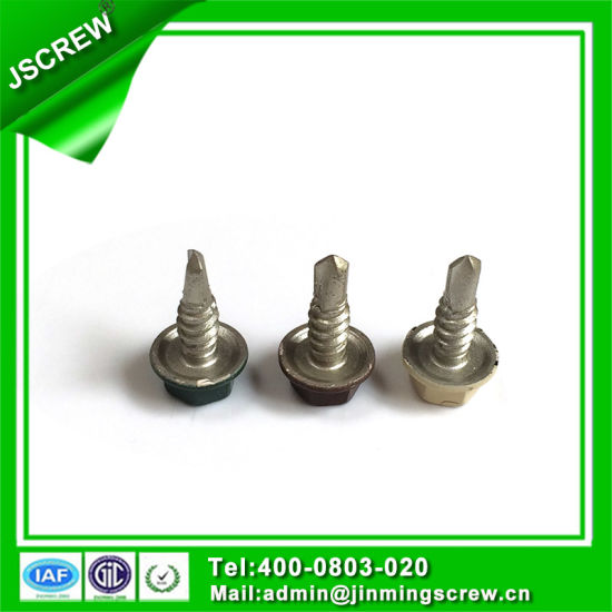 10# Painted Hot DIP Galvanized Hex Head Self Drilling Screw pictures & photos