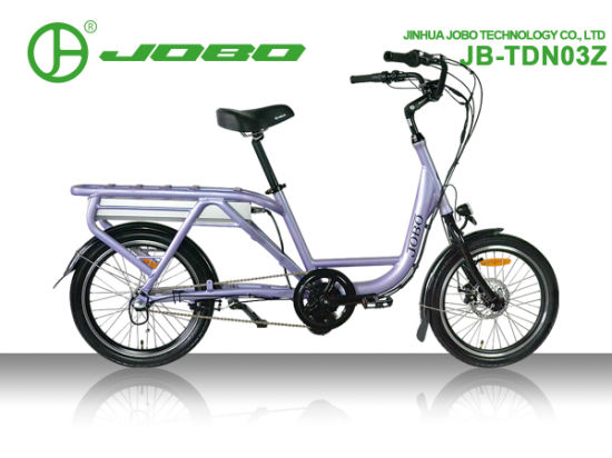 Long Driving Distance 48V 23ah 500W Cargo Ebike with Throttle System