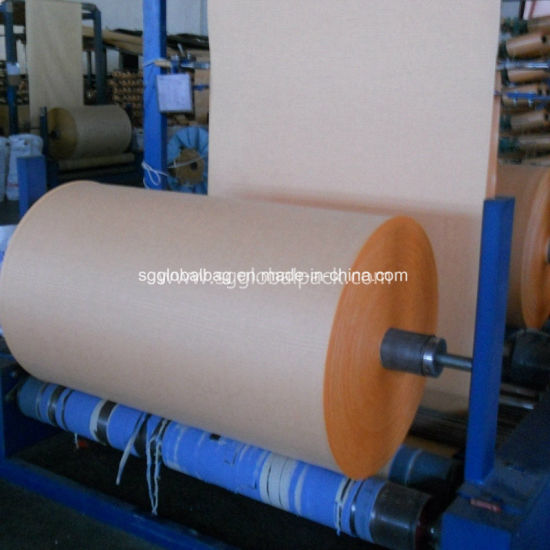 Raw PP Material Woven Tubular Fabric pictures & photos