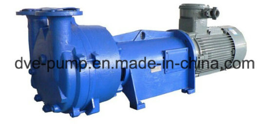Liquid Ring Pump Used for Vacuum Degassing Industry