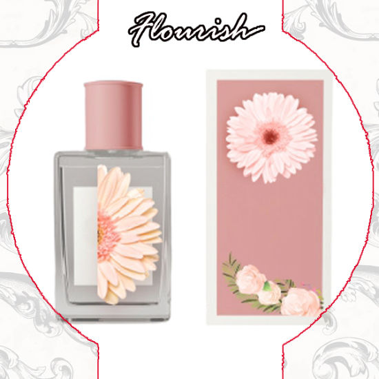Lady's Fashion Body Sprayer Packaging Cosmetic Box