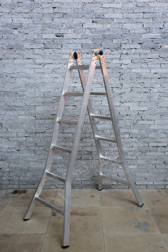 Double-Function Profile Ladder Metal Aluminum Extrusion Aluminium Alloy Ladder pictures & photos