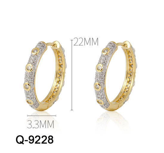 Hot Sell 925 Sterling Silver Earrings Fashion Jewelry (Q-9228)