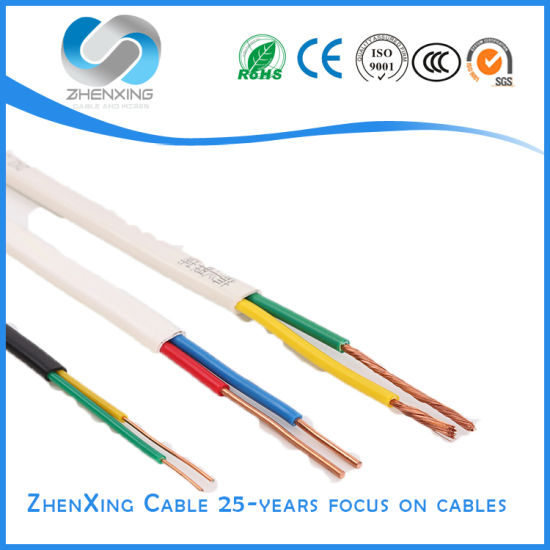 300/500V Two or Three Core PVC Insulated and Sheathed Flat Electric Wire Cable