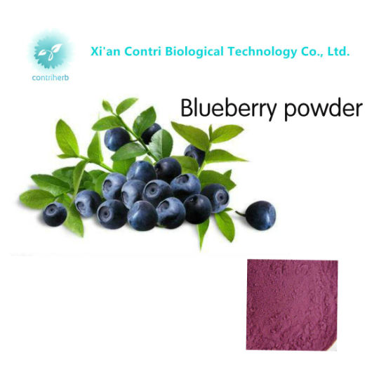 100% Natural Pure Blueberry Powder pictures & photos