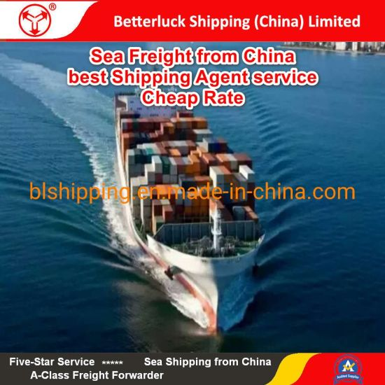 sea freight to Jakarta Indonesia from China Foshan shipping logistics  services
