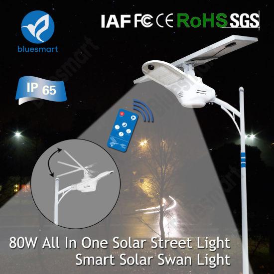 Module Design Solar LED Garden Light With Solar Light Balls