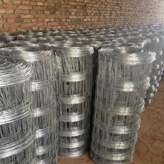 Hot Dipped Galvanized Field Fence/Sheep Fence/Grassland Fence pictures & photos