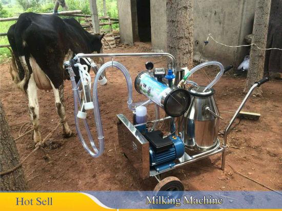 Portable Stainless Milking Machine /& Dairy Cow Milker Bucket Tank Barrel Cattle