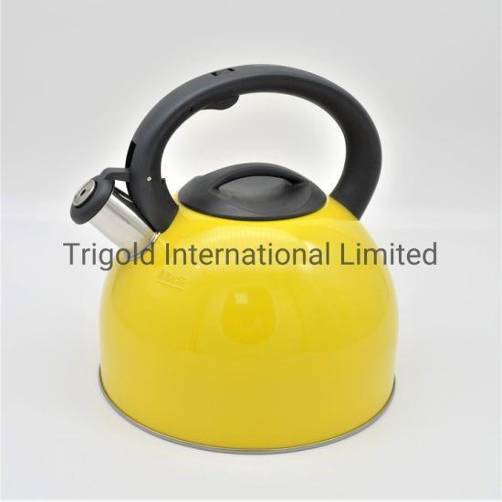 Most Popular Stainless Steel Water Kettle Fast Boil Kettle Tgk2925