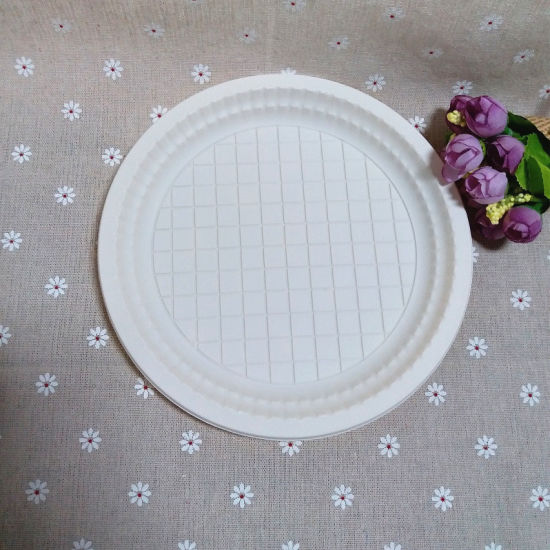 Outdoor Party Disposable Dinner Plate Round Biodegradable Plate & China Outdoor Party Disposable Dinner Plate Round Biodegradable ...