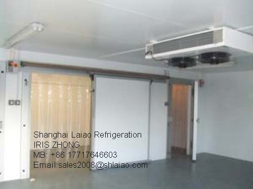 Cold Room/Cold Storage Room/ Frozen Room/Walk in Chiller/ Cooler pictures & photos
