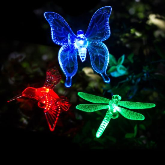 China Multi Color Changing Led Premium Butterfly