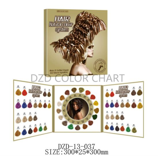 Foldable Hair Colour Chart Book for Hair Dye pictures & photos