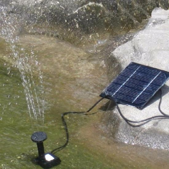 Solar Power Panel Landscape Pool Solar Water Pump Garden Solar Power Fountain pictures & photos