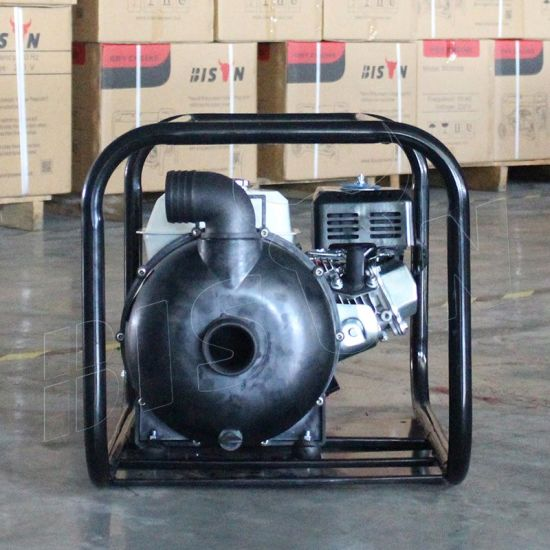 Bison (China) Bscwp20 2inch High Pressure High Qualtiy Pump Body Single Cylinder Water Pump Fish Farm pictures & photos