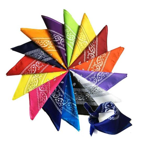 Fashion 22X22inches Inches Other Size Men Women Type Printed Custom Polyester Bandanna