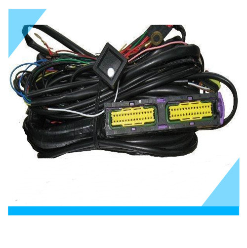 china ecu wiring harness for cng lpg ecu custom cable assembly rh starconnect en made in china com
