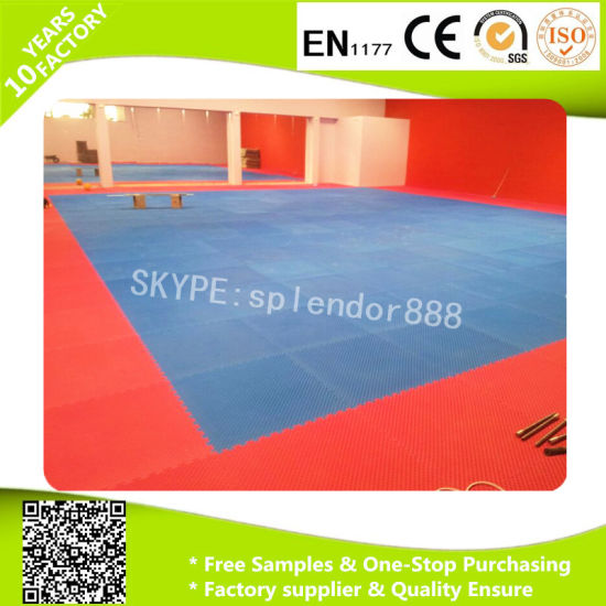 10-Tile Multi-Color Exercise Mat Solid Foam EVA Playmat Kids Safety Play Floor pictures & photos