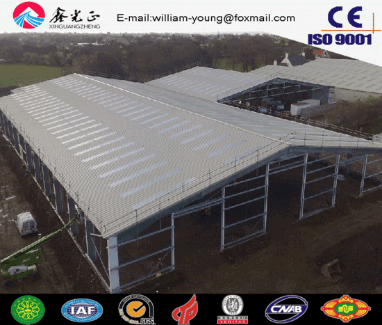 Building Materials Used for Steel Structure Workshop/Warehouse (JW-19274)